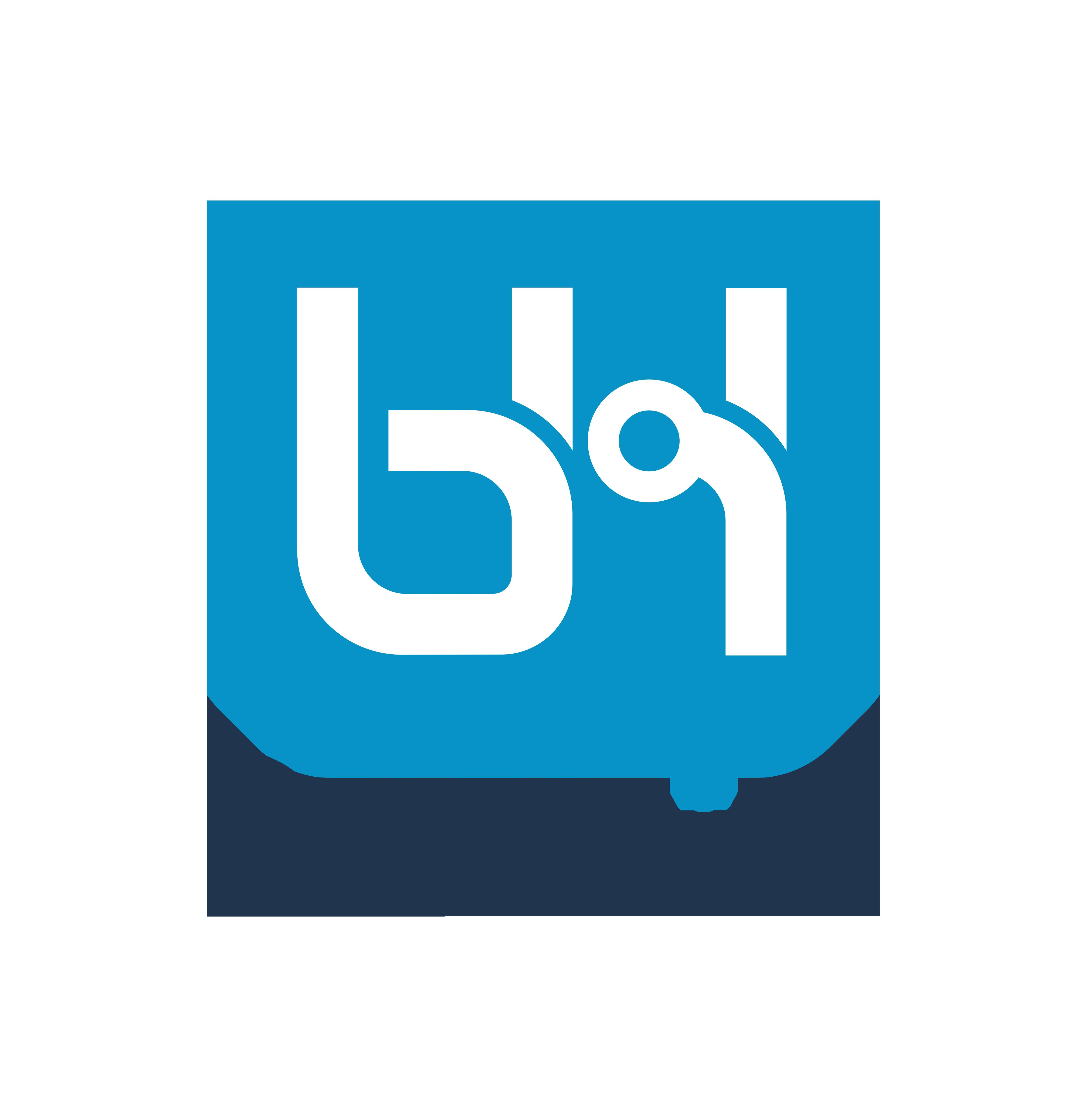BHDynamics